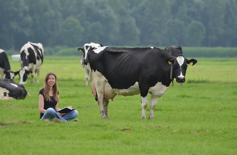 Ik zit in een weiland te schetsen naast mij staat een koe.